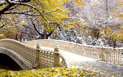 Fall Central Park New York Wallpapers   HD Wallpapers   ID